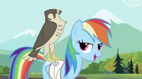 Rainbow Dash with the falcon 2 S2E07