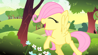 Fluttershy starts to sing S1E23