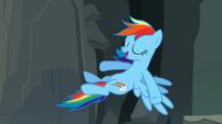 "Rainbow Dash ""Right, you guys"" S2E07"