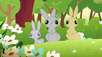 Rabbits S1E23