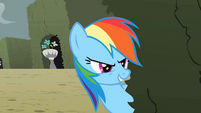 Rainbow Dash 'I've got you now, element' S2E01