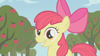 "Apple Bloom ""Runs in the family"" S1E12"