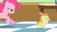 Pinkie Pie chasing Pumpkin Cake S2E13