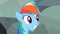 Rainbow Dash smiling 3 S2E07