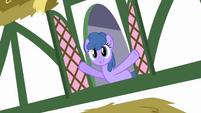 Window ponies 2 S2E18
