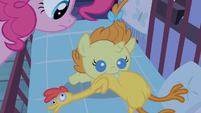 Pinkie Pie setting her down S2E13