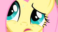 Fluttershy Teal eye close up S1E17