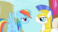 Rainbow Dash staring at Royal Guard S1E22