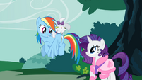 Opal on Rainbow Dash's back S1E14