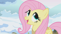 """Fluttershy """"this is my favorite task of the whole season"""" S1E11"""