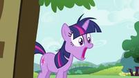 Twilight Sparkle surprised S2E03