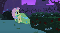 Fluttershy looking behind S01E26