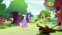 Twilight Sparkle going to Fluttershy's home S2E03