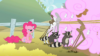 Pinkie Pie annoyed by animals eating her cotton candy S2E01