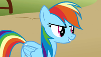 Rainbow Dash determined S1E13