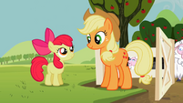 Apple Bloom and Applejack outside of the sheep's pen S2E05