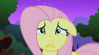Fluttershy freaking out S1E17