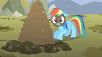 Rainbow Dash with mud on face S01E19