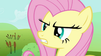 Fluttershy manning up S2E19