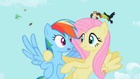 Fluttershy 'don't forget style' S2E07