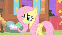 Fluttershy watches the CMC S1E17