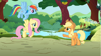 Applejack giving orders to Rainbow and Fluttershy S01E10