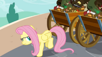Fluttershy ready to kick S02E19