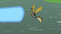 Wasp buzzing S2E07