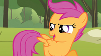 Scootaloo 'The greatest flyer ever to come out of Cloudsdale' S1E23