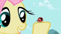 Fluttershy with ladybug S2E07