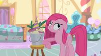 Pinkie Pie and Mr Turnip S01E25