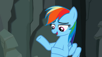 """Rainbow Dash """"They don't like it"""" S2E07"""