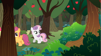 Sweetie Belle Confused S1E18