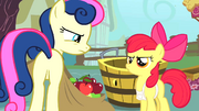 Apple Bloom fills Sweetie Drops's bags with apples S1E12