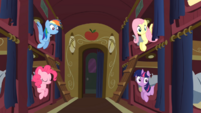 Ponies look at Spike S01E21