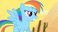 Rainbow Dash on the train S01E21