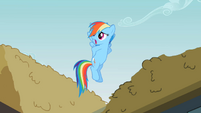 Rainbow Dash 'And I guess' S2E08