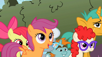 Twist Apple Bloom Scootaloo Cheerilee's Class3 S2E01