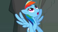 Rainbow Dash looking up S2E07
