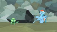 "Rainbow Dash ""Annoying turtle in the world"" S2E07"