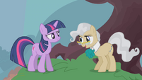 """Mayor Mare """"we would still be arguing"""" S1E11"""
