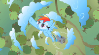 Rainbow Dash flying through circle of clouds S2E03