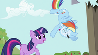 Rainbow Dash about to fall S2E03