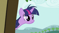 Twilight Sparkle sees something S2E03