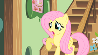 Fluttershy going to the brunch S01E22