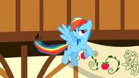 Rainbow Dash burnt tail S2E14