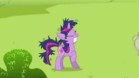 Twilight Sparkle groan 3 S2E03