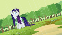 Rarity wet mane S2E05