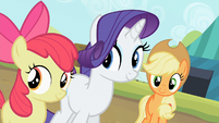 Apple Bloom, Rarity and Applejack are smiling S2E05