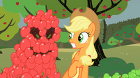 Apple pile brainwashing Applejack S2E01